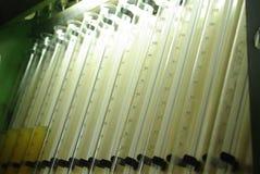 flacons Photos libres de droits