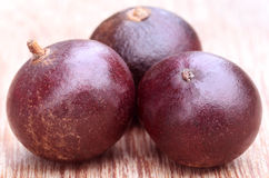 Flacourtia fruits Royalty Free Stock Image