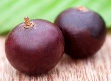 Flacourtia fruits Stock Photo