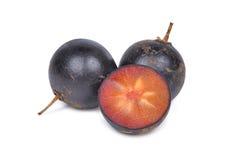 Flacourtia indica fruit op wit wordt geïsoleerd dat royalty-vrije stock afbeelding