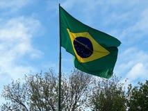 fladdra för Brasilien flagga royaltyfria foton