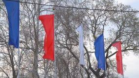 fladdrande wind för flaggor stock video