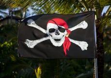 flag пират Стоковая Фотография