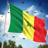 flag Сенегал Стоковые Фотографии RF
