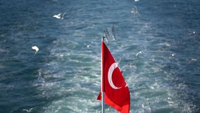 Flag of the aft Turkish ship flutter on wind. Blue waves against the background of the flying and screaming seagulls stock video