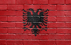 Flag of Albania on brick wall. Flag of Albania painted onto a grunge brick wall Stock Photography