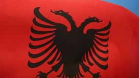 Flag of Albania. The Flag of Albania is a red flag, with a silhouetted black double-headed eagle in the center, that represents the sovereign state of Albania stock footage