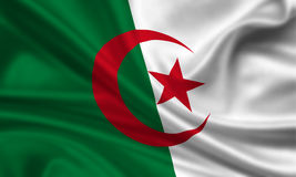 Flag of Algeria. 3d rendered flag of algeria Stock Photography