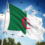 Flag of Algeria. This is a computer generated and 3d rendered image Royalty Free Stock Images