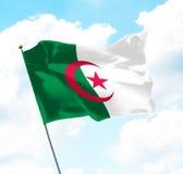 Flag of Algeria Royalty Free Stock Photos