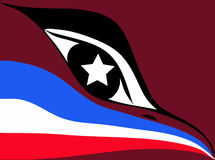 Flag American. In an image of a bird Royalty Free Stock Image