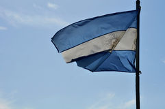 Flag of Argentine Royalty Free Stock Photography