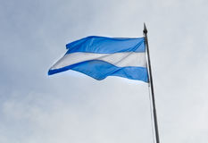 Flag of Argentine Stock Image
