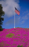 Flag atop purple hill Royalty Free Stock Photography