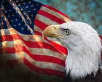 Flag with Bald Eagle Stock Photography