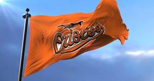 Flag of Baltimore Orioles, american professional baseball team, waving - loop. Flag of the team of the Baltimore Orioles, american professional baseball team stock video