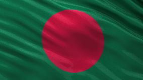 Flag of Bangladesh seamless loop Royalty Free Stock Photo