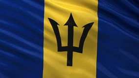 Flag of Barbados seamless loop Royalty Free Stock Photo