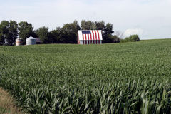 Flag Barn. Barn painted with flag in Iowa corn field stock photography