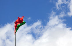 Flag of   Belarus Stock Image