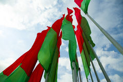 Flag Belarus. In sky photo Royalty Free Stock Image