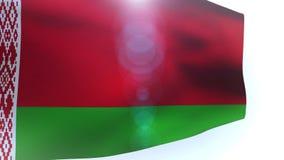 Flag of belarus waving in the wind wave. Video stock footage
