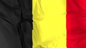 Flag of Belgium waving stock footage
