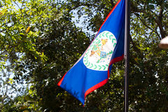 Flag of Belize royalty free stock photo