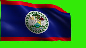 Flag of Belize - LOOP Royalty Free Stock Photo