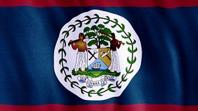 Flag Of Belize stock video