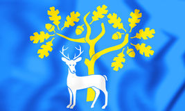 Flag of the Berkshire, England. Stock Photos