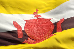 Flag of Brunei Stock Images