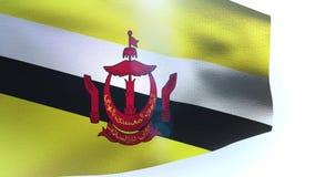 Flag of Brunei wave waving. Video stock video