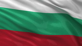 Flag of Bulgaria seamless loop Royalty Free Stock Photography