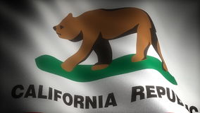 Flag of California stock video