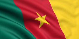 Flag Of Cameroon stock illustration