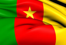 Flag of Cameroon Royalty Free Stock Image