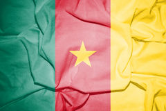 Flag of Cameroon. Royalty Free Stock Photo