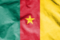 Flag of Cameroon. Stock Photo