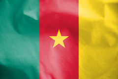 Flag of Cameroon. Stock Images