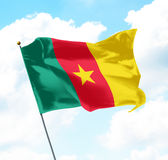 Flag of Cameroon. Raised Up in The Sky Stock Photography
