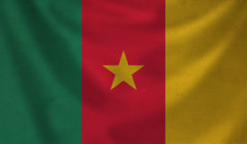 Flag of Cameroon. Royalty Free Stock Photos