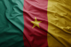 Flag of Cameroon Stock Image