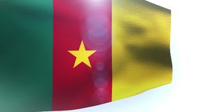Flag of Cameroon waving in the wind. Video stock video
