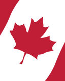 Flag of Canada. Vector illustration of the canadian flag Royalty Free Stock Photography