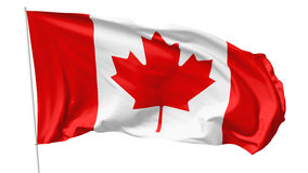 Flag of Canada on flagpole. National flag of Canada on flagpole flying in the wind isolated on white, 3d illustration Stock Images
