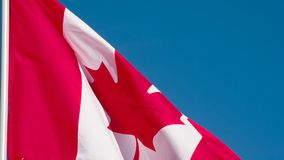 Flag of Canada fluttering in the wind. The Big State Flag is illuminated by the sun and flutters epically in the wind against the rising sun. Slow Motion 120 fps stock footage