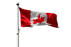 Flag of Canada Stock Photography