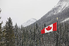 Flag of Canada flying over mountain forest Stock Photo