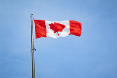 Flag canada Stock Image